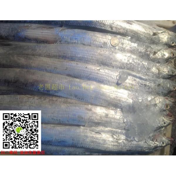 冻中国带鱼 (独立条装)