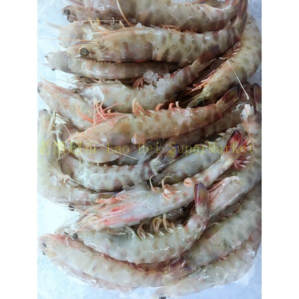 九节虾(2号)1KG
