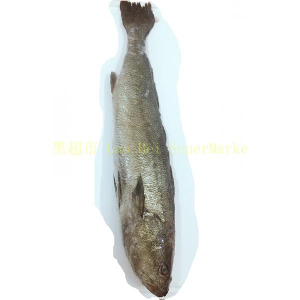 鮸鱼 1KG