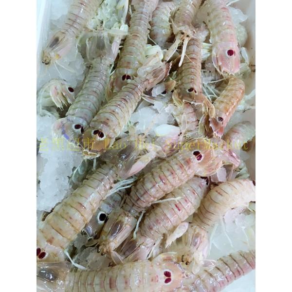 虾蛄(濑尿虾)1KG